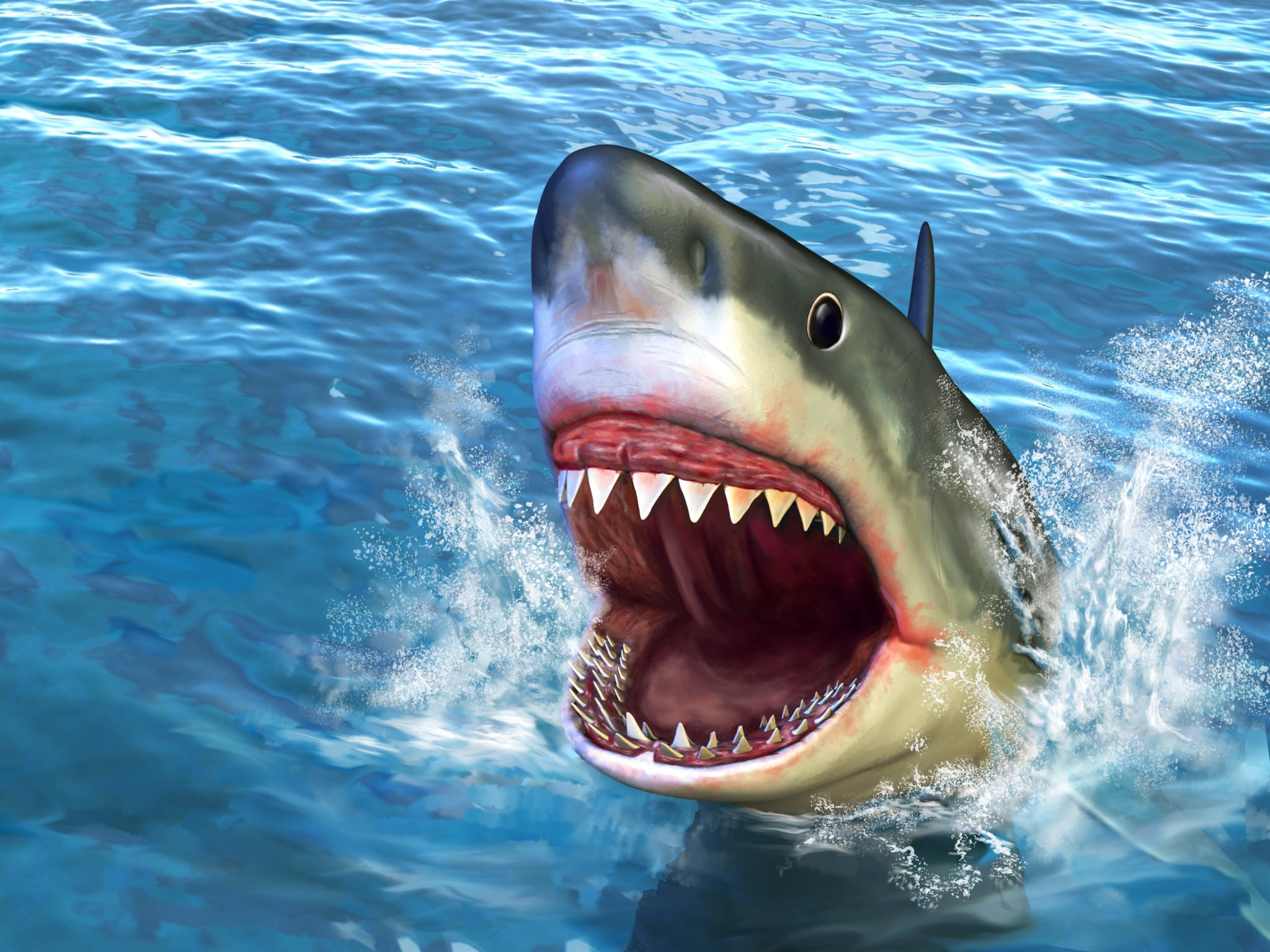 shark week discovery