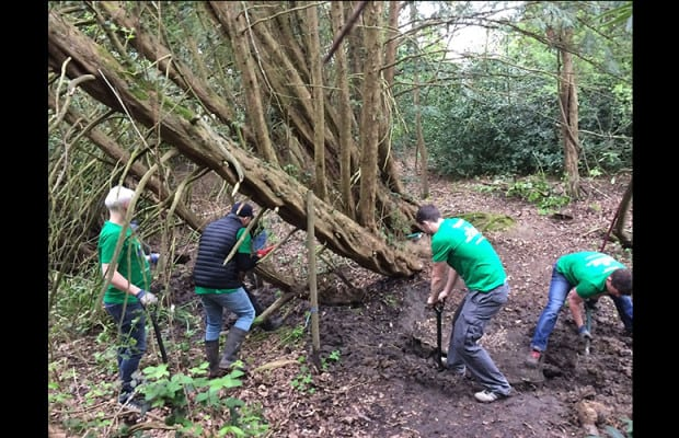 NBCU International employees volunteered in London. Comcast Cares Day projects were held in 21 countries around the globe.