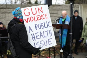 NRA effros gun violence