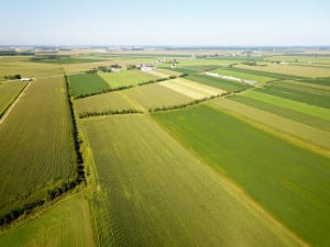 rural digital divide